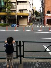朝散歩 - 神社をながめる (2012/10/28)