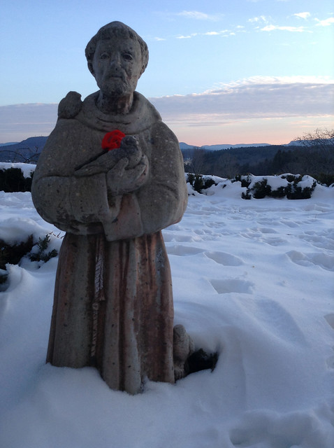 Saint Francis in Winter, Kripalu