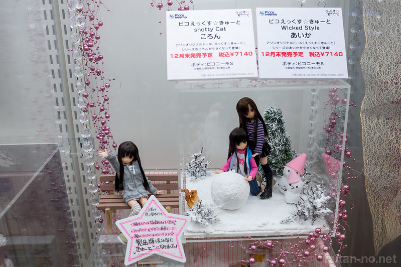 AZONE_LS_Akihabara_20130105-DSC_9868