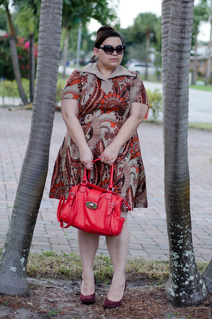 Vintage dress, lulus bag