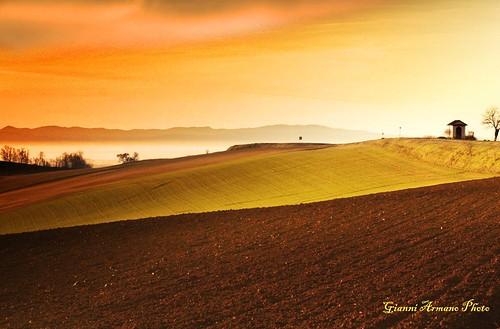 Terre del Monferrato
