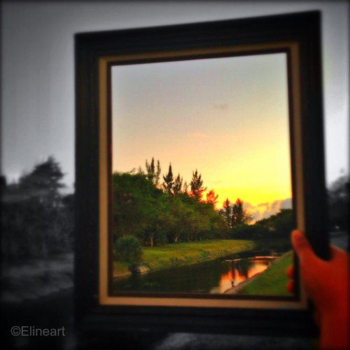 57:365 Framed by elineart