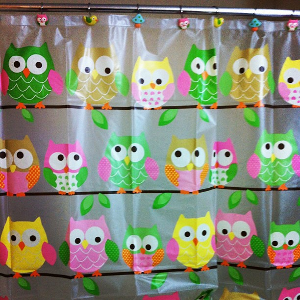 Cutest owl shower curtain on clearance @ Target | Flickr - Photo ...