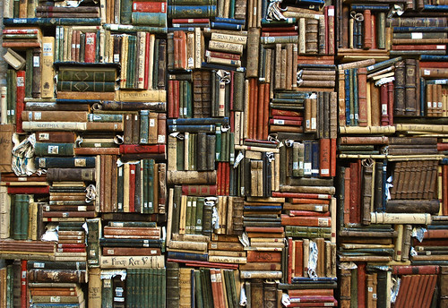 Wall library (Pesaro, Italy)