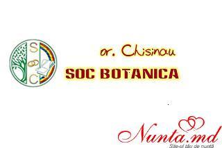 OSC sec. Botanica > Foto din galeria `Principala`