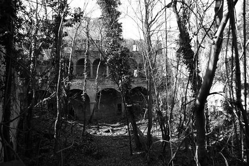 ruine burg