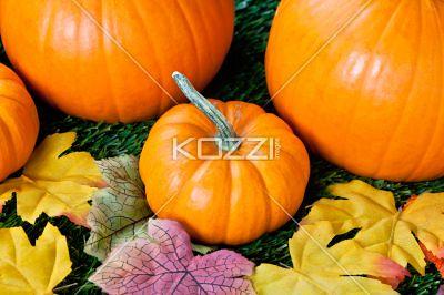 overhead view of halloween pumpkins