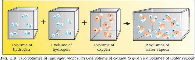 NCERT Class XI Chemistry Chapter 1 - Some Basic Concepts Of Chemistry