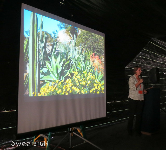 Debra presentation on companion plants