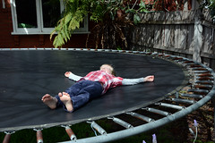 backyard, trampolining--equipment and supplies, trampoline,