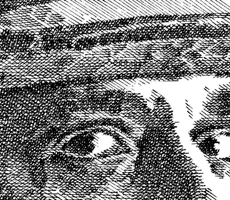 Tinkelman58.detail02