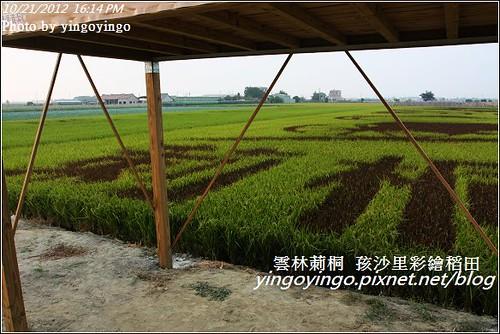 雲林莿桐_孩沙里彩繪稻田20121021_I0243