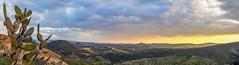 Table Top Mountain Vista