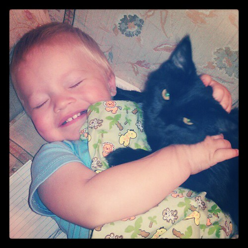 Kitten was purring. :) Ari loves to cuddle but tends to get too rough. But I watched him close and they both loved it!!