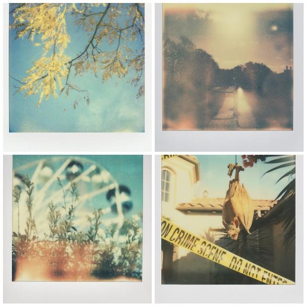 Polaroid Mosaic