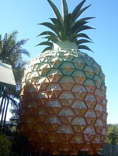 Big Pineapple by holidaypointau