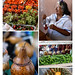 New Mexico Farmers Market: cactus flowers, tomatoes, green chiles, a gourd basket
