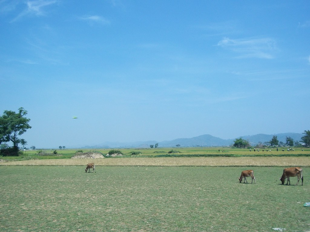 Farmland on the road to Dalat, Vietnam