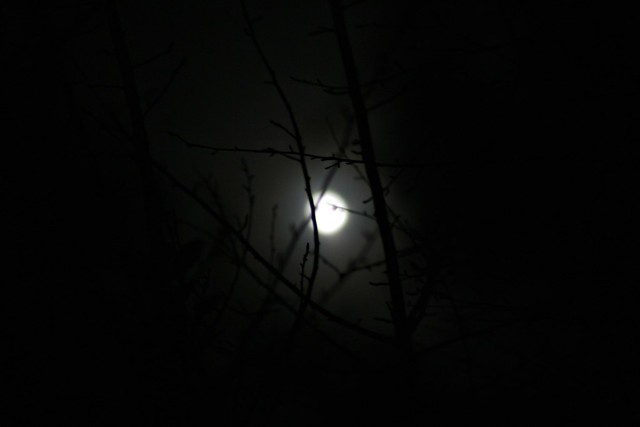 taurus full moon, mid hurricane sandy