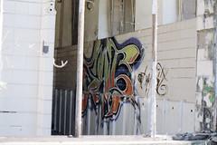 Graffiti Toilet