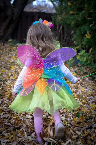 little rainbow fairy
