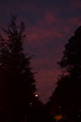street light sunset sky tree silhouette clouds purple