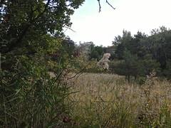 Photo of Méounes-lès-Montrieux