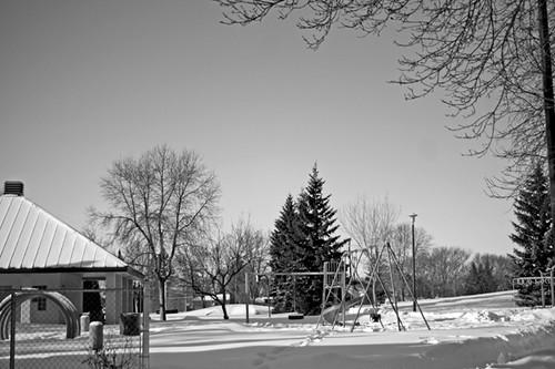 20/365 :: snowy park