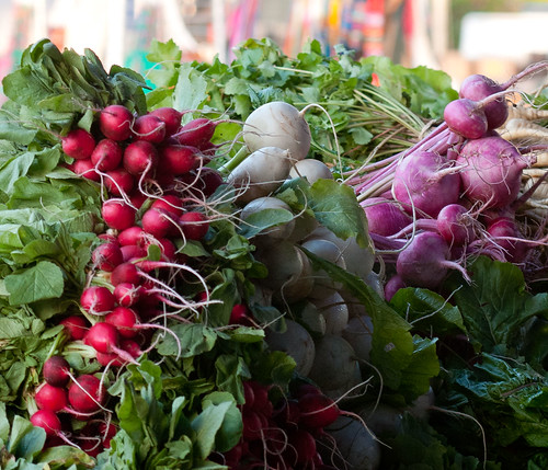 Radishes like these from Worden Farm in Florida can add color to your tossed salad. Look for brightly colored radishes with green tops. USDA Photo courtesy of Lance Cheung.