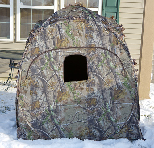 Doghouse Ground Blind for Birding by Ricky L. Jones Photography
