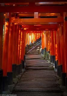 Torii gates, Fushimi Inari Shrine, Kyoto