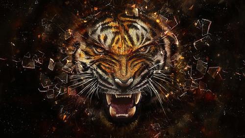 [フリー画像素材] グラフィック, イラスト・CG, 虎・トラ ID:201302100000