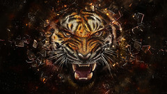 [Free Images] Graphics, Illustration / CG, Tigers ID:201302100000