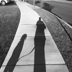 No stick this morning but a great shadow capture of me and my Shadow.  (Sorry couldn't resist) #lifewithdog #shadowthedog #onawalk #lifewithshadow