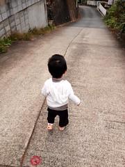 朝散歩 (2012/10/14)