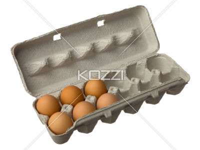 six brown eggs in a eggbox