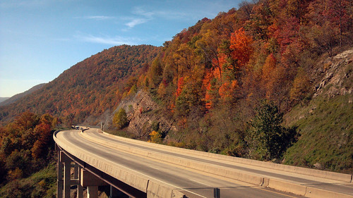 road autumn fall virginia highway wisecounty