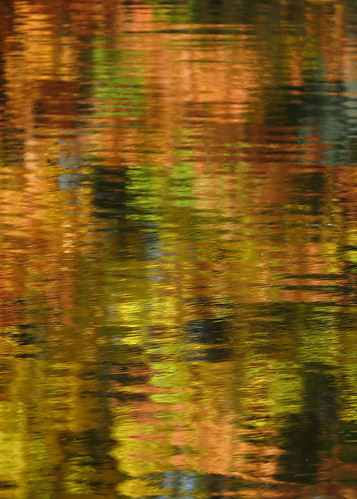 Reflected Autumn Colors