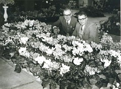 Fred Brooks (left) First Prize, Adelaide Show 1963