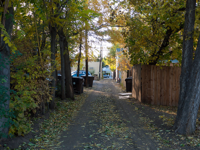 Goss Grove Alley Shortcut by Zane Selvans on flickr