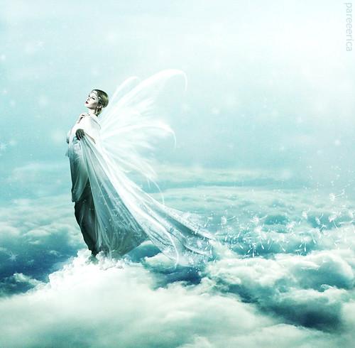 * Angel *