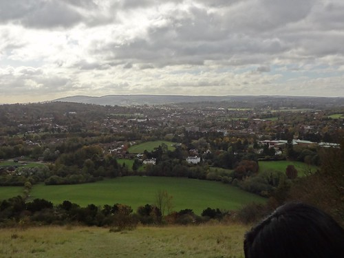 Views of Surrey Hills