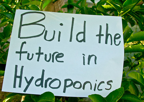 Build the future in Hydroponics