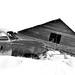 Fallen loo house