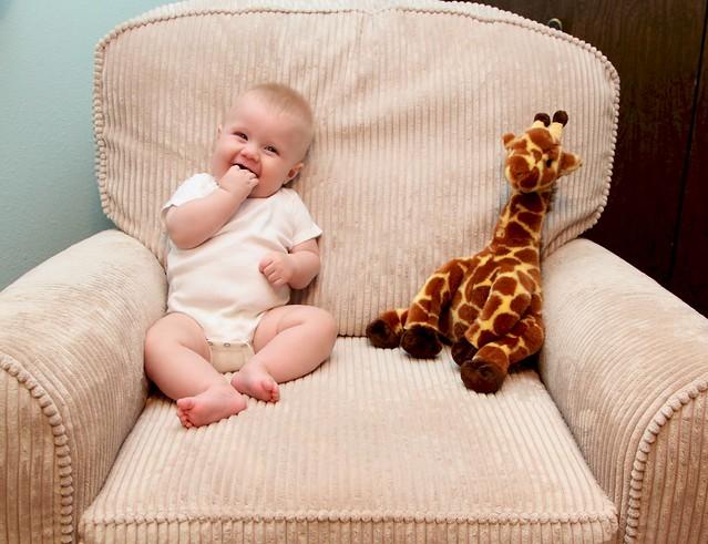 M vs giraffe week 21