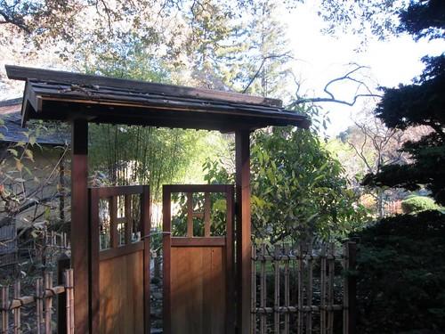 Hakone Japanese Gardens, Saratoga, CA IMG_2353