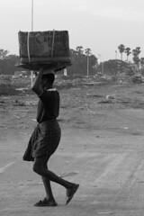 Carrying fruit in Koyambedu Market
