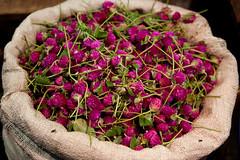 Flowers in Koyambedu Market