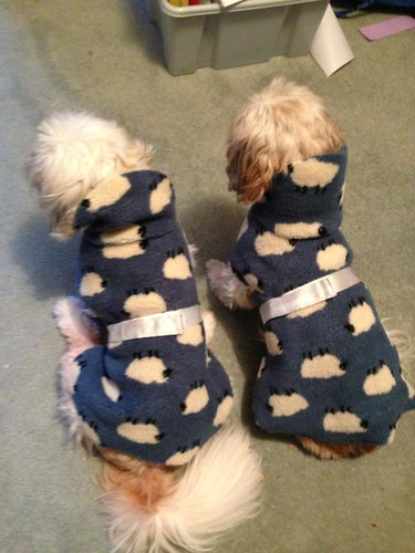New Coats for Daisy and Minnie
