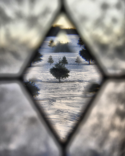 Through Bevelled & Frosted Glass